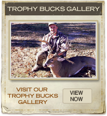 Trophy Bucks Gallery